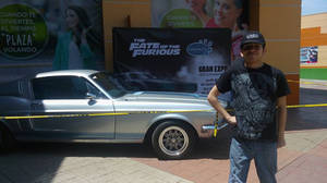 The Saleen And Me