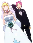 Natsu and Lucy : 3 [marriage]