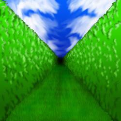 bush maze by einhazen