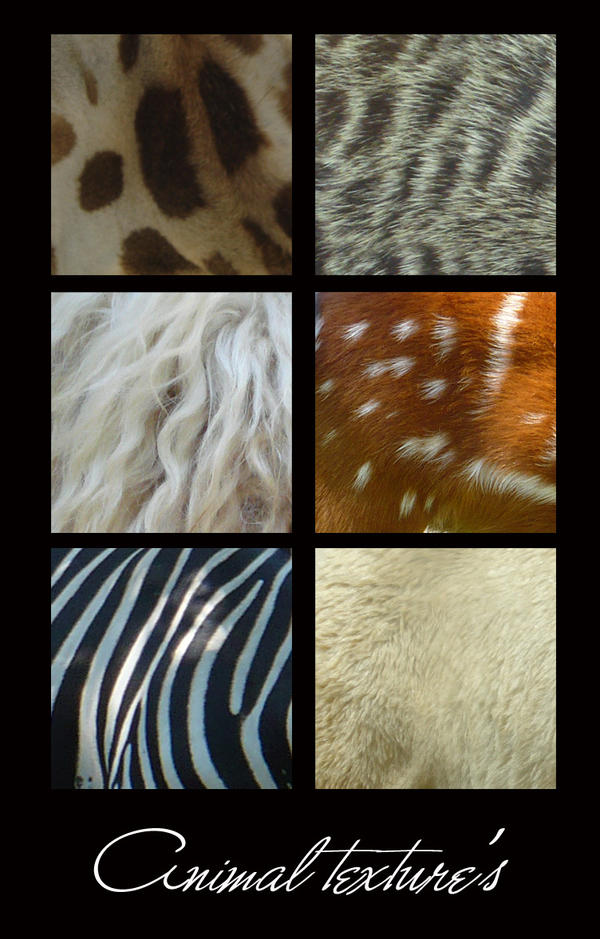 animal textures by flocska