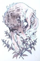 nettles by arboret