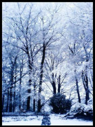 White Dream by Skyer