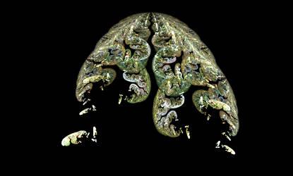 Brain Scan by Skyer