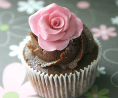 chocolate n pink by ZaLita