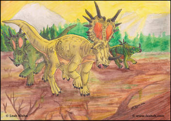 Styracosaurus - Herd Beginnings by LeahCK