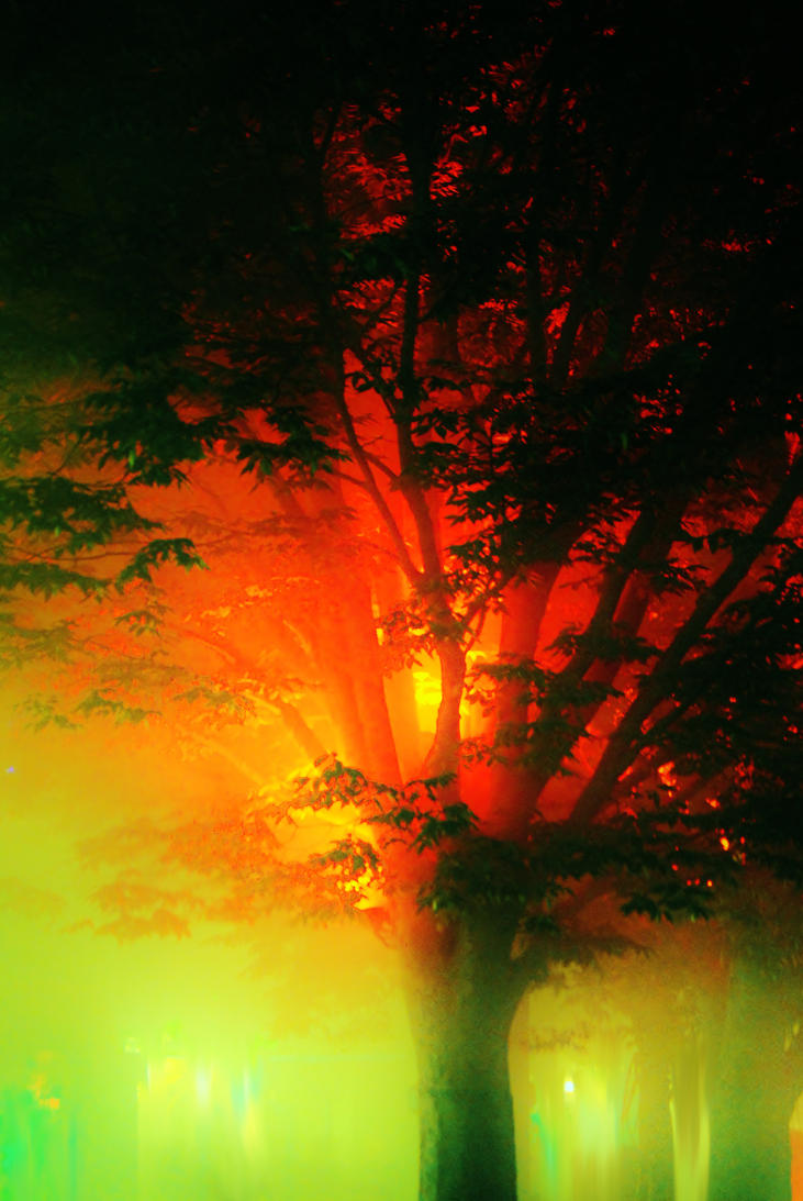 Haze by KrisVlad
