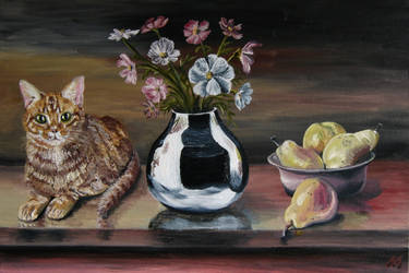 Still life with ginger cat