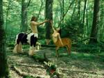 Centaurs by elei-photos