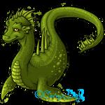 Swampie Large - Subeta App