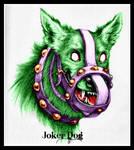 Joker Dog