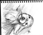 daily sketch 370 by nosoart