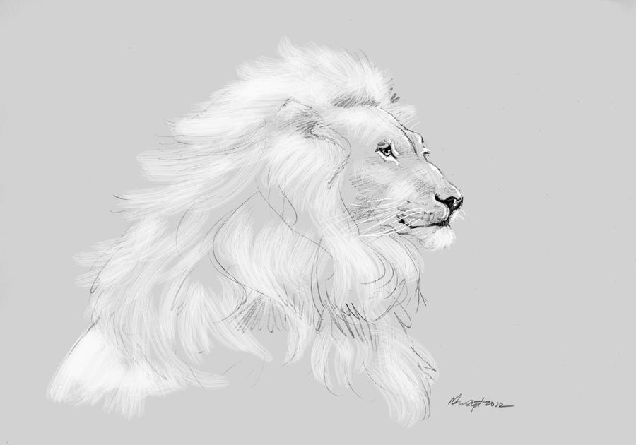 mandatory daily cat sketch 1101 by nosoart