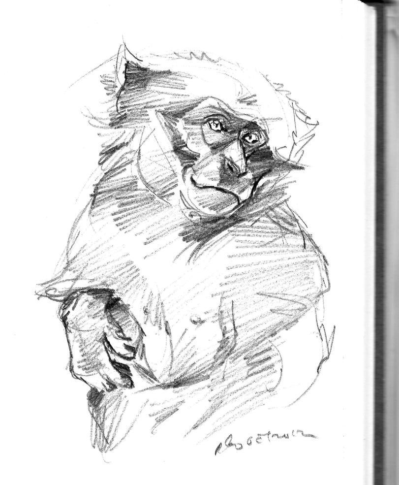 daily sketch 1330 by nosoart