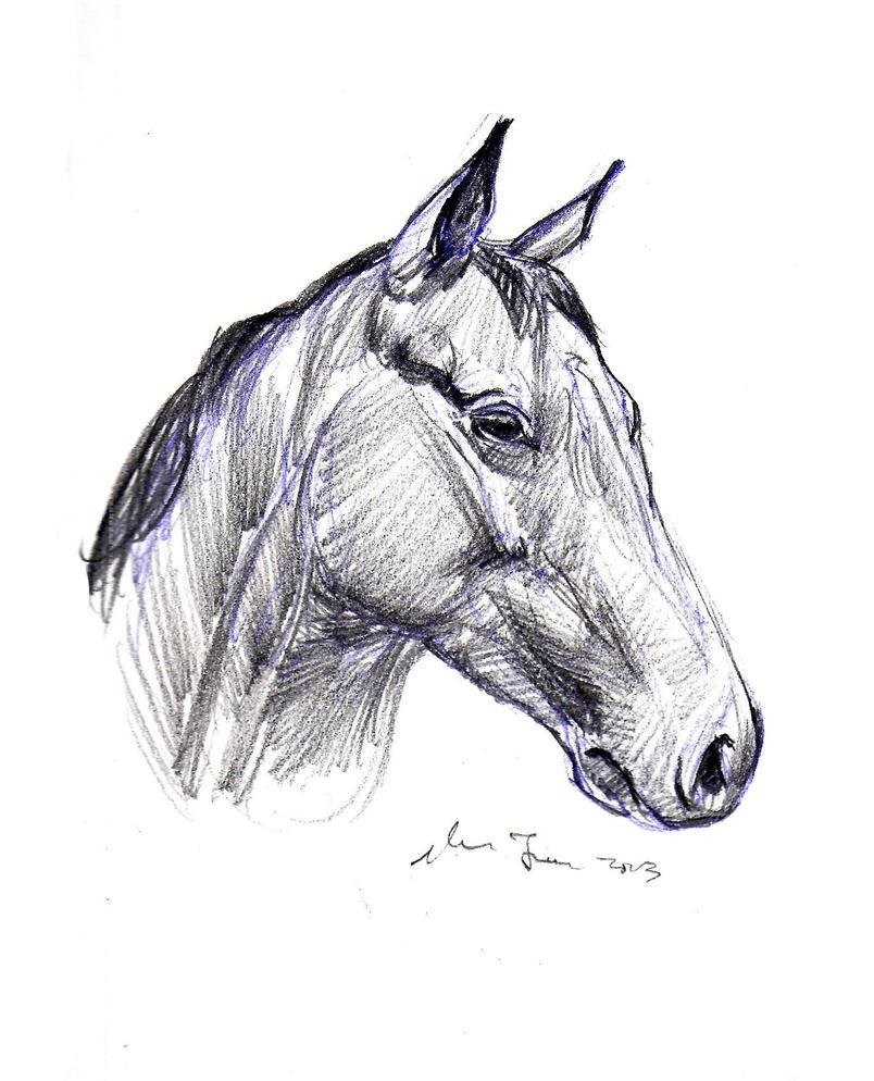 daily sketch 2027 by nosoart