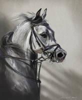 Arabian speed-painting PS by nosoart
