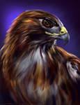 Bird of Prey PS