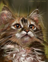 mandatory daily cat sketch 3672 by nosoart