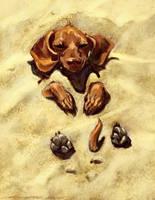Wiener dog  PS by nosoart