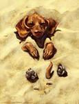 Wiener dog  PS