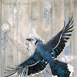 Bluejay Aria by TempestErika