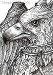 Gryffin ATC by TempestErika