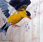 American Goldfinch Impromptu