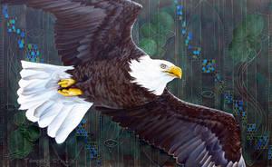 Bald Eagle Espressiva by TempestErika