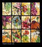 Botanical Studies / ATC by TempestErika