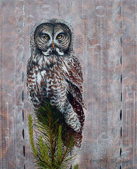 Grey Owl Renaissance