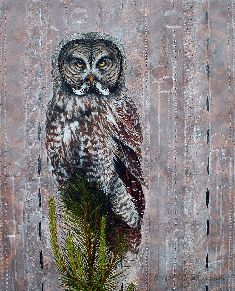 Grey Owl Renaissance by TempestErika
