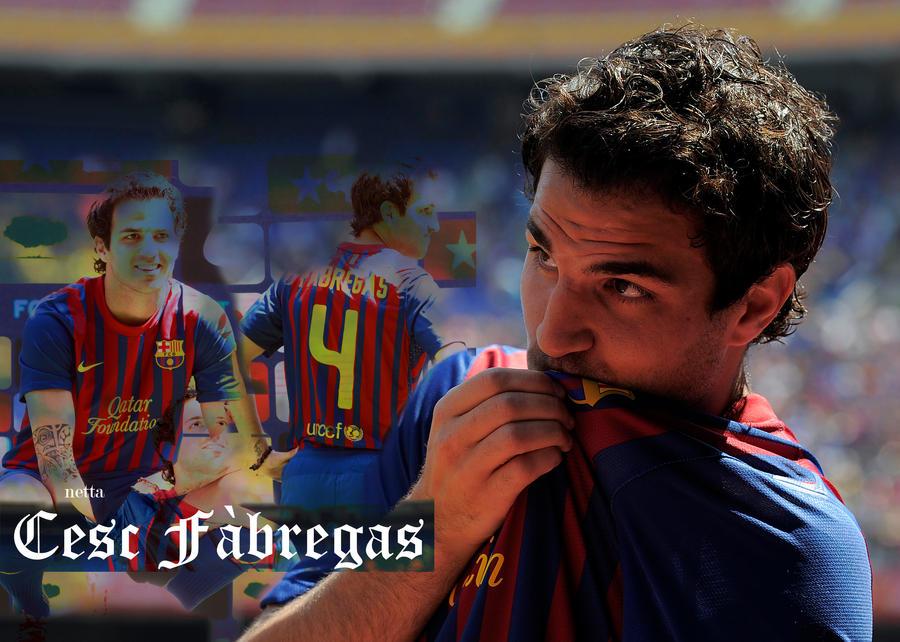 Cesc Fabregas FC Barcelona by netta95