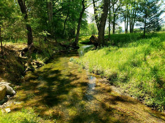 The Creek Flows On