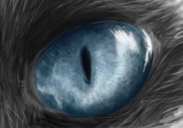 Cat eye by ThamuzMartu