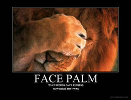 Demotivator: Face Palm