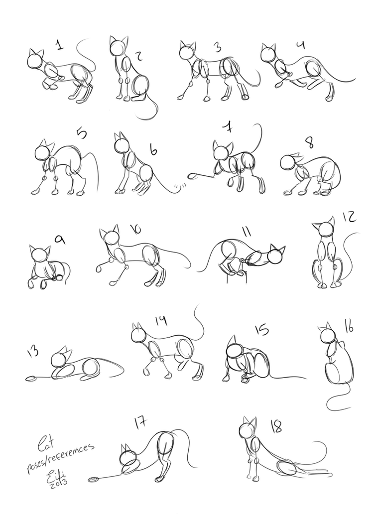 Cats Poses References By Eifihanaki On Deviantart