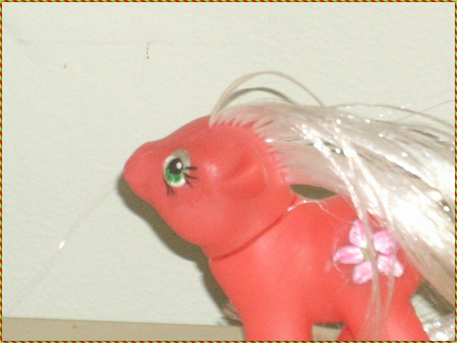 PoinsettiaStar - G1 newborn Fakie Protrait by PrincessTaffy