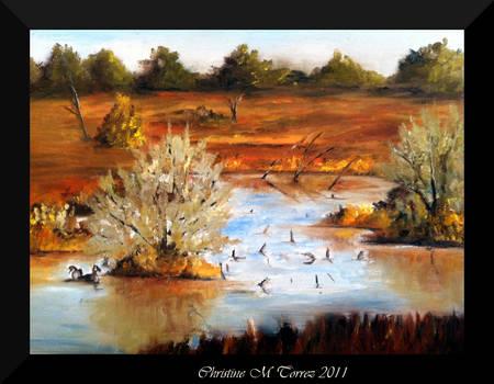 Riverbend Ponds
