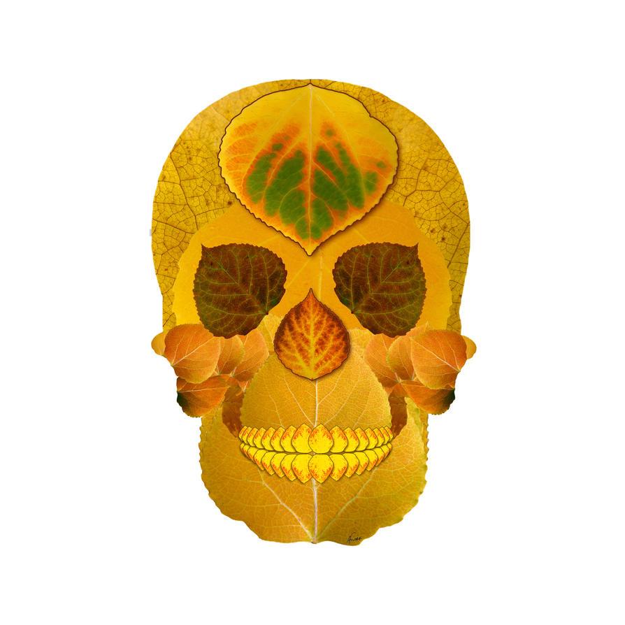 Aspen Leaf Skull 8 by AgustinGoba