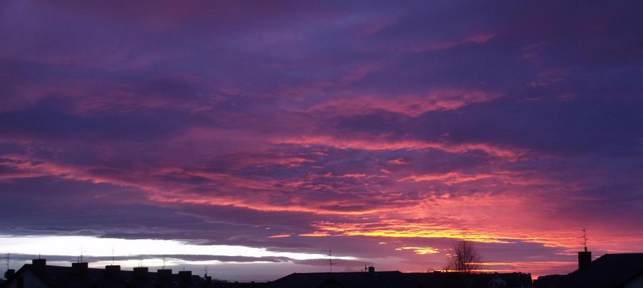 Sunset by PrismTank