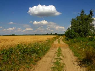 Path 3 by PrismTank
