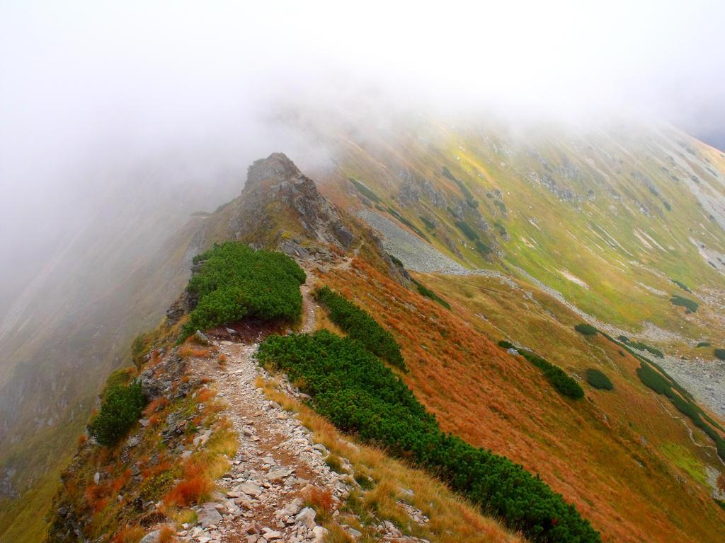 Tatras 4 by PrismTank