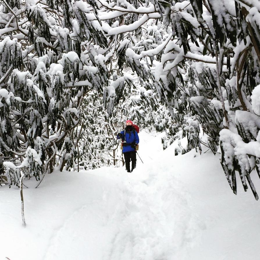 Winter Wonderland by photogeniee