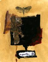 Papillon by aburningmember