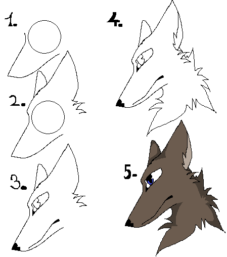 How i draw wolf head by chibi okinu