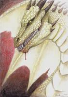 pencil drawing of a Dragon
