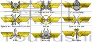 M08 Specialization insignia
