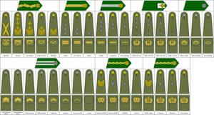M07 Coat Rank Marines by Tounushi