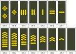 m09 Merc Combat Rank Insignia