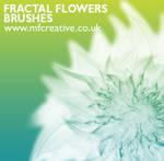 Fractal Flower Brushes