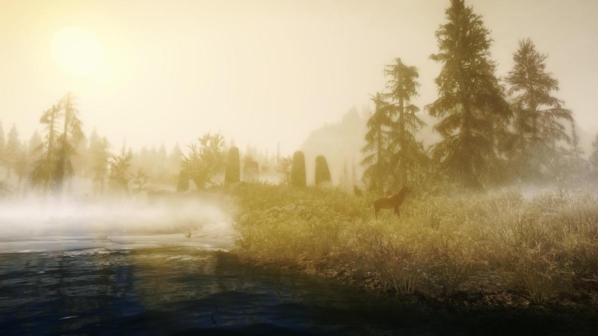 Morning in swamp by OnlyKazisvet